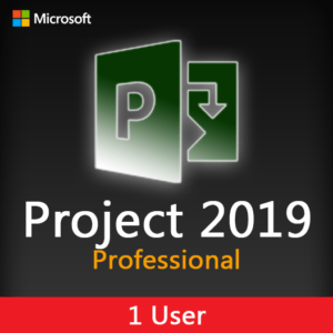 Project 2019 Professional License Key