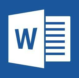 Microsoft office prodessional plus 2019 Word