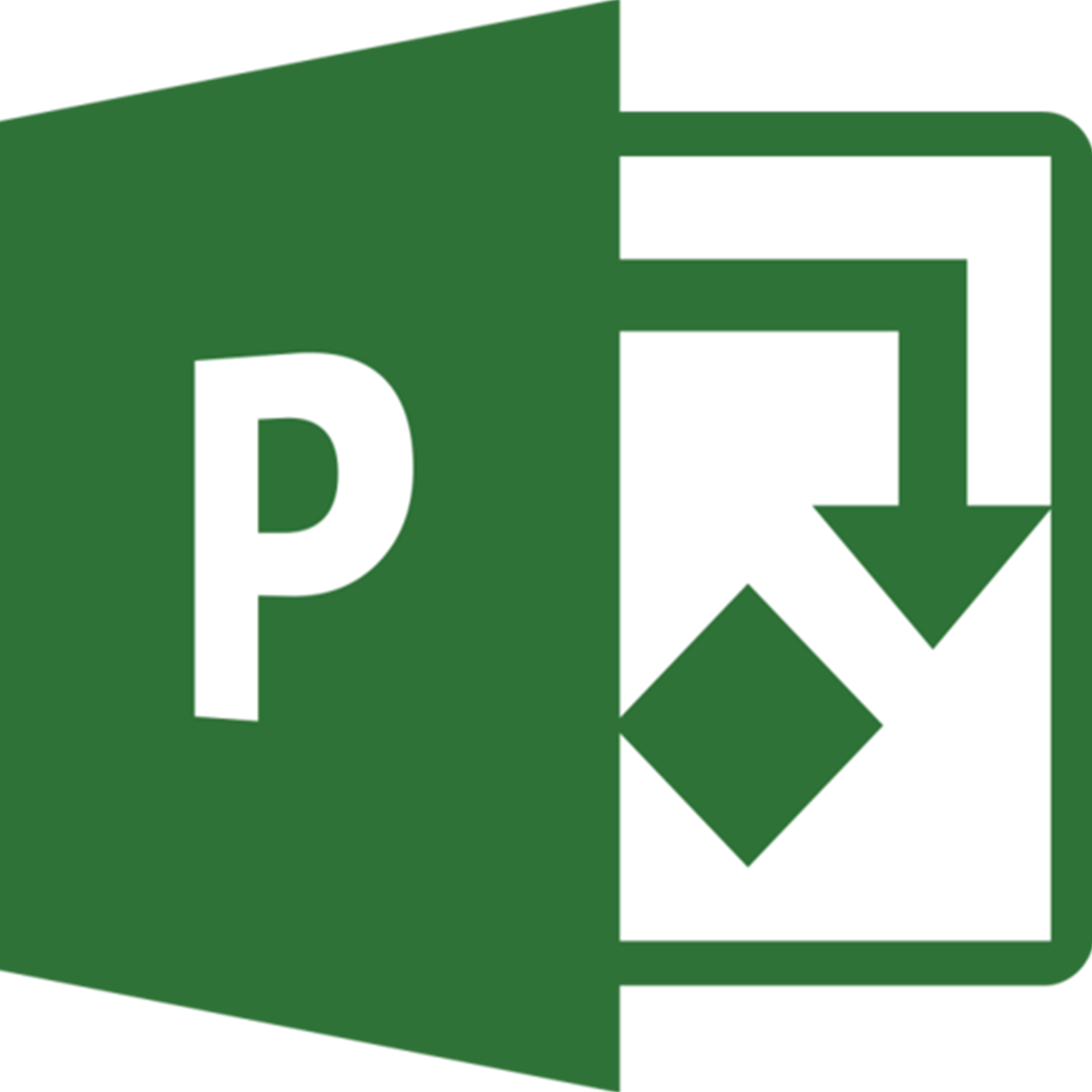 PROJECT LICENSE