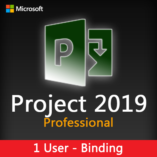 Project 2019 Professional Binding License Key for 1 user