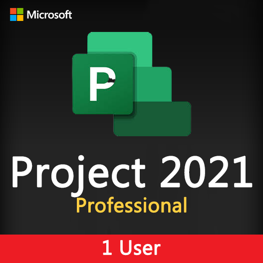 Project 2021 Professional License Key for 1 user