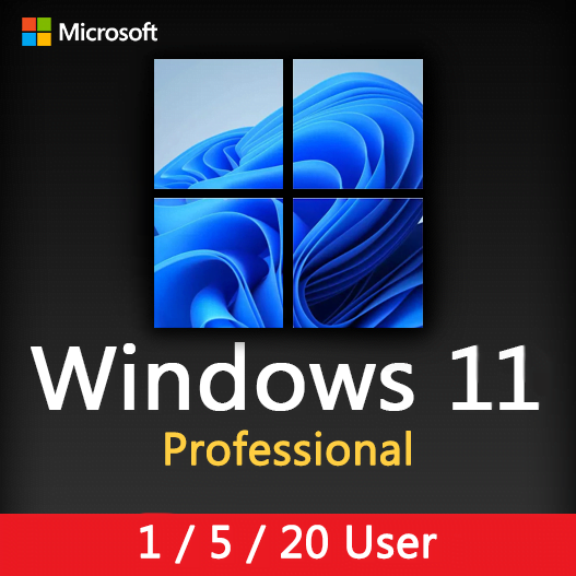 Windows 11 Professional Activation License key for 1, 5, 20 User